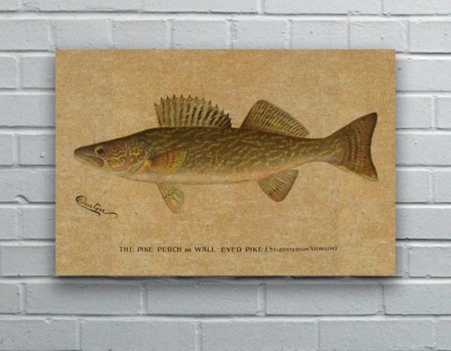 Denton Walleye hemp art-Animals and Nature