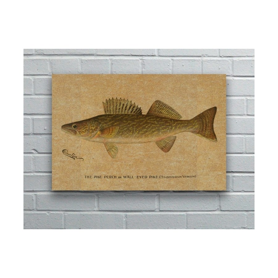 Denton Walleye hemp art