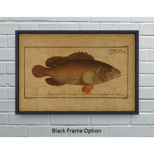 Black Grouper hemp art-Animals and Nature