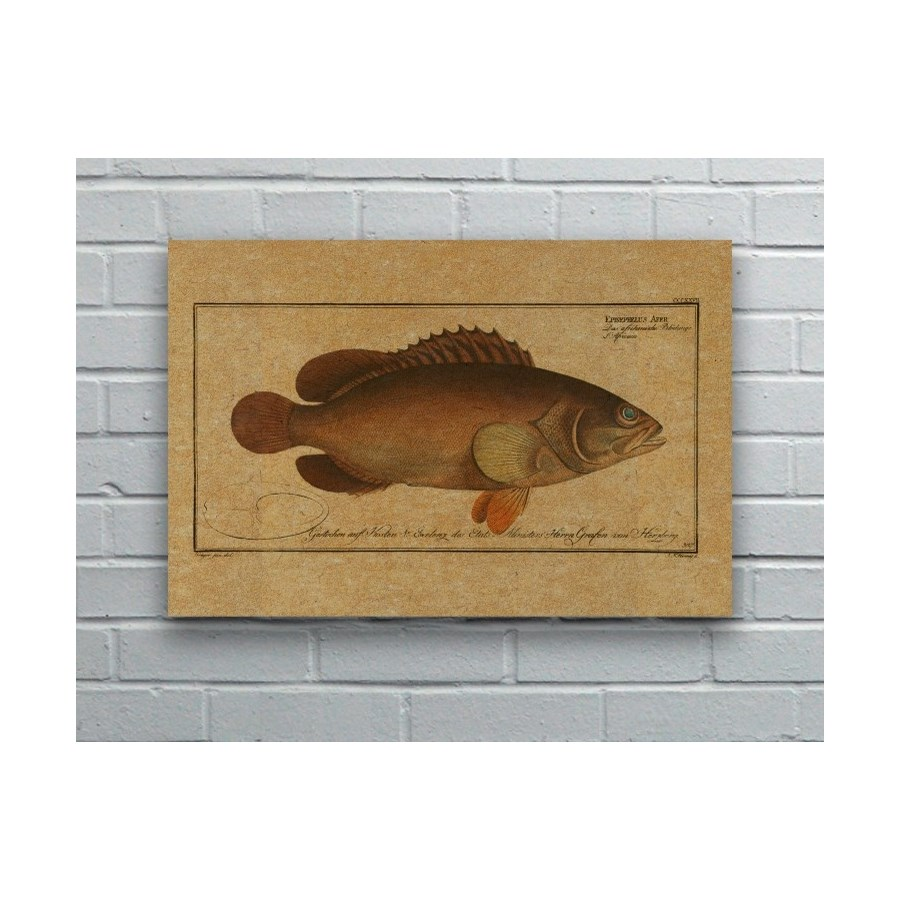 Black Grouper hemp art