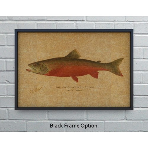 Canadian Red Trout hemp art-Animals and Nature