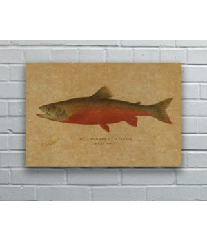 Canadian Red Trout hemp art