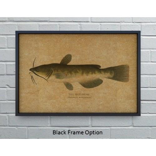 Bullhead Catfish hemp art -Animals and Nature