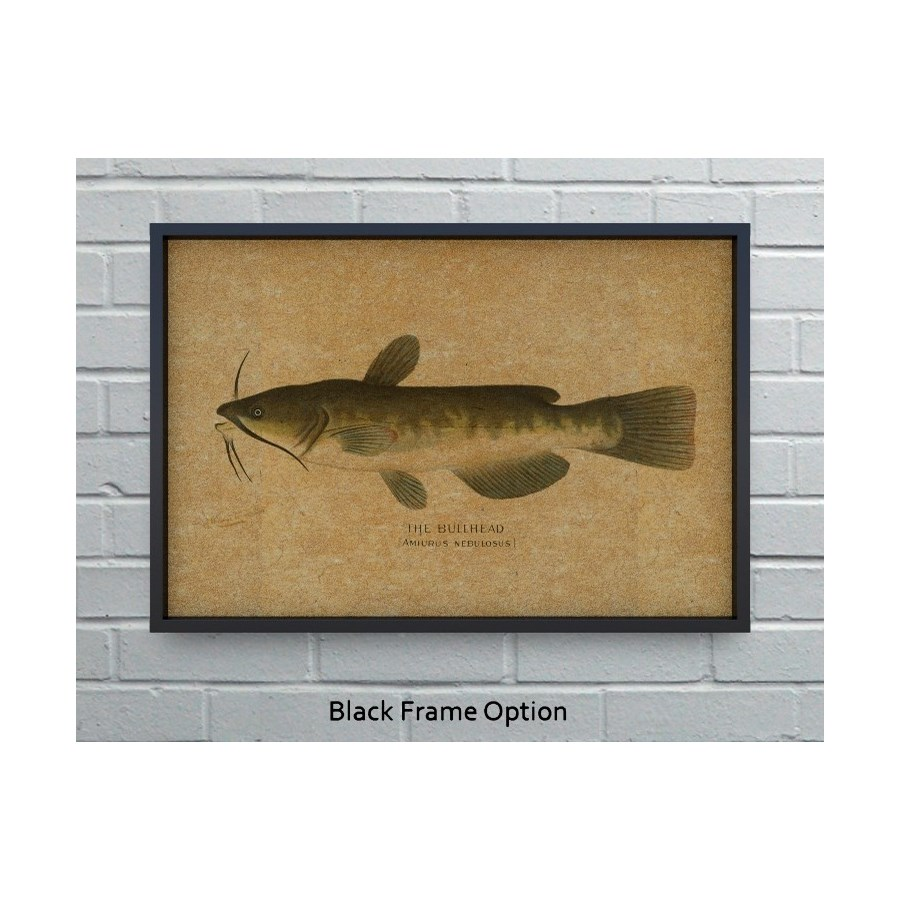 Bullhead Catfish hemp art -Animals and Nature