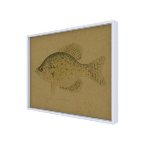 Calico Bass hemp art