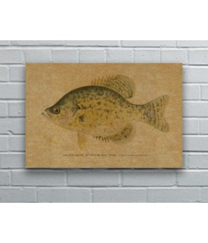 Calico Bass hemp art-Animals and Nature