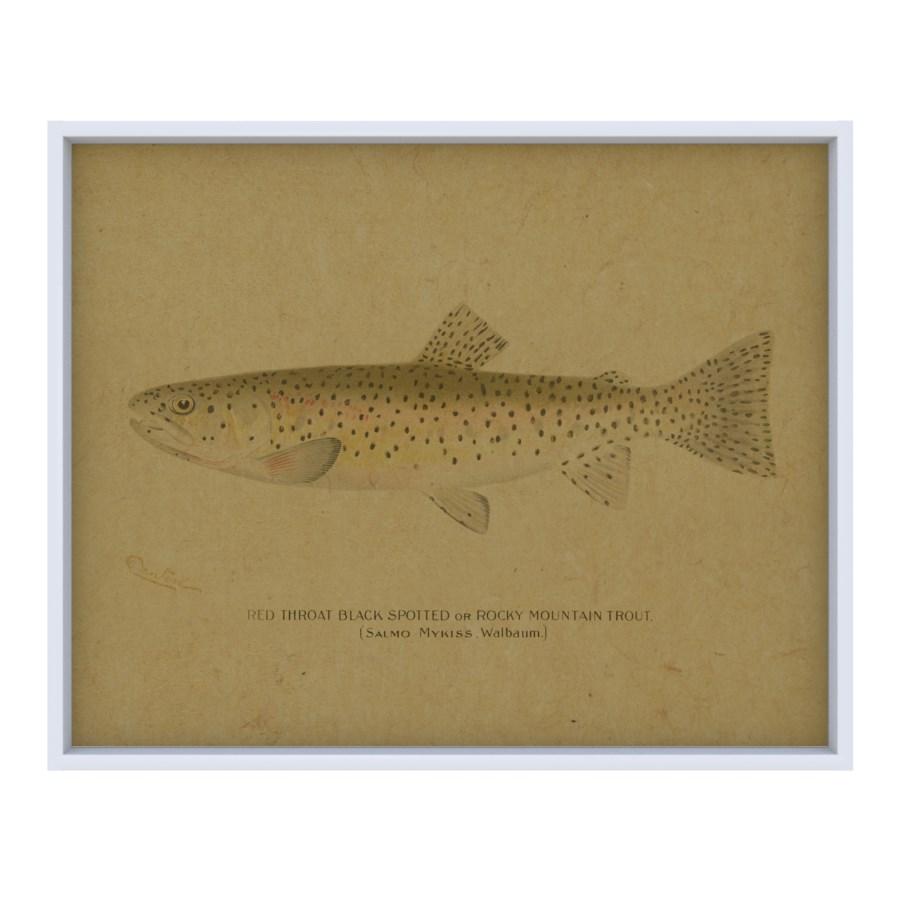 Fish I hemp art