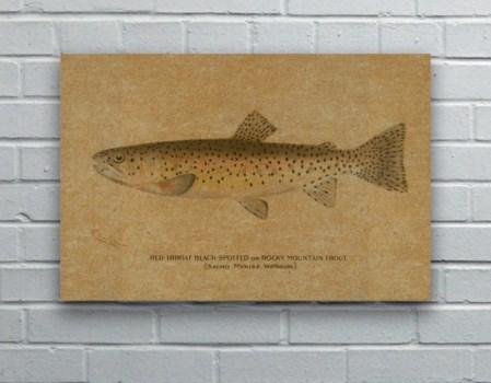 Fish I hemp art-Animals and Nature