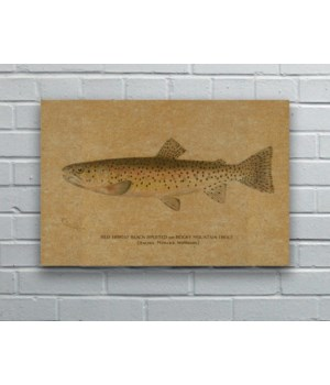 Fish I hemp art-Animals and Nature