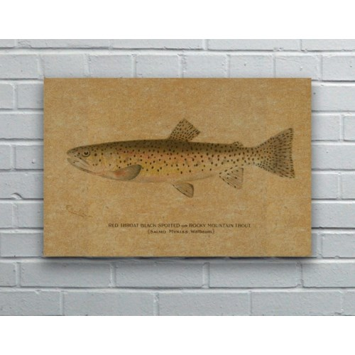Fish I hemp art