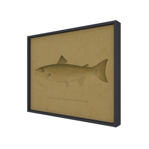 Fish II hemp art