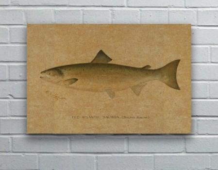 Fish II hemp art- Animals and Nature
