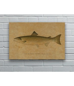 Fish II hemp art- Animals and Nature