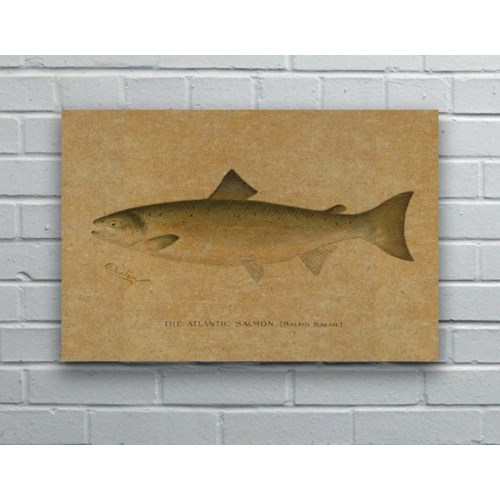 Fish II hemp art