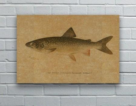 Fish III hemp art-Animals and Nature