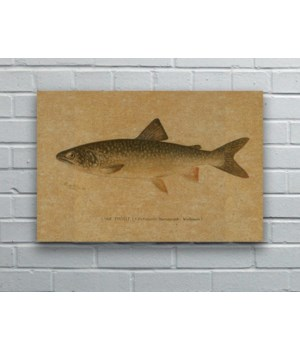 Fish III hemp art-Animals and Nature