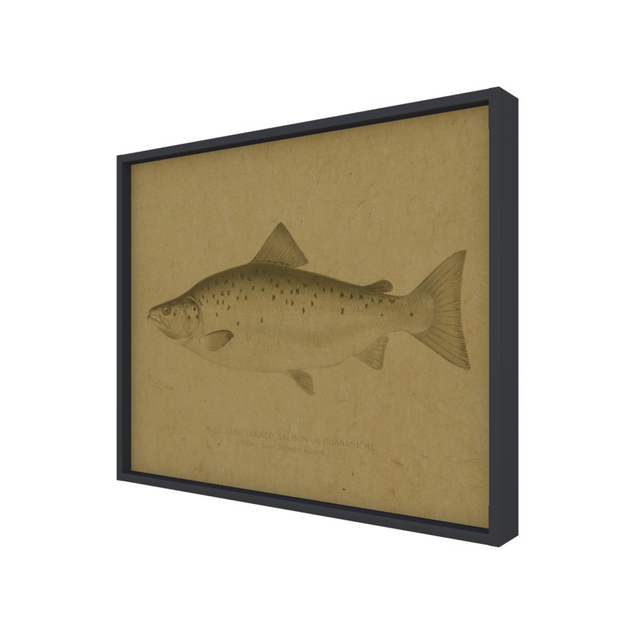Fish IV hemp art
