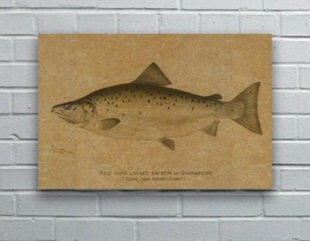 Fish IV hemp art -Animals and Nature