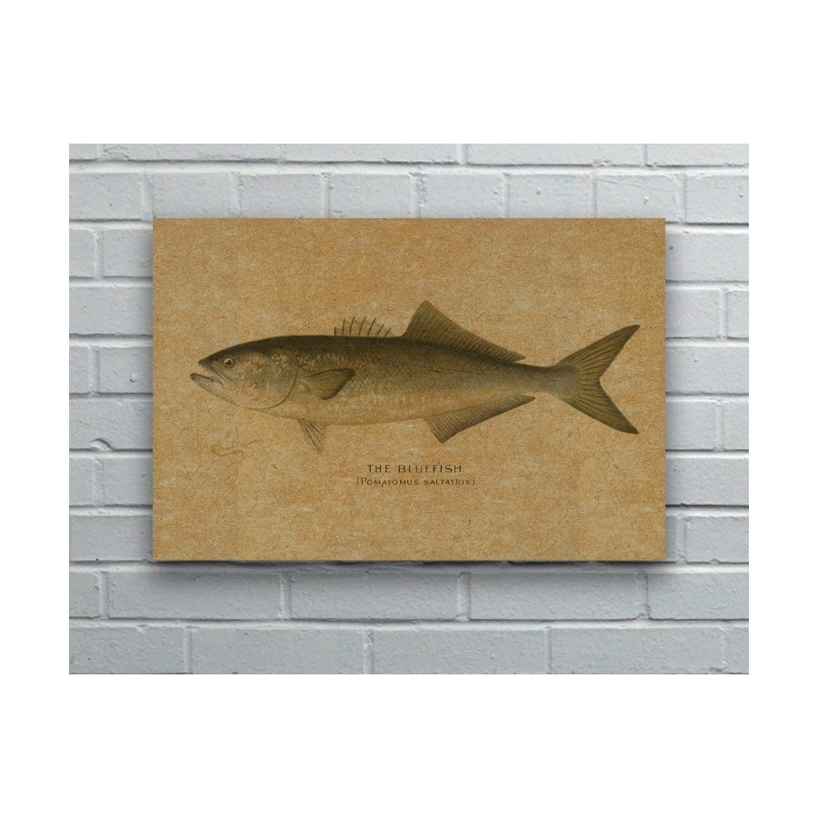 Fish V hemp art