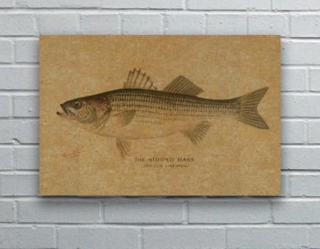 Striped Bass hemp art-Animals and Nature