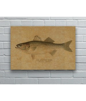 Striped Bass hemp art