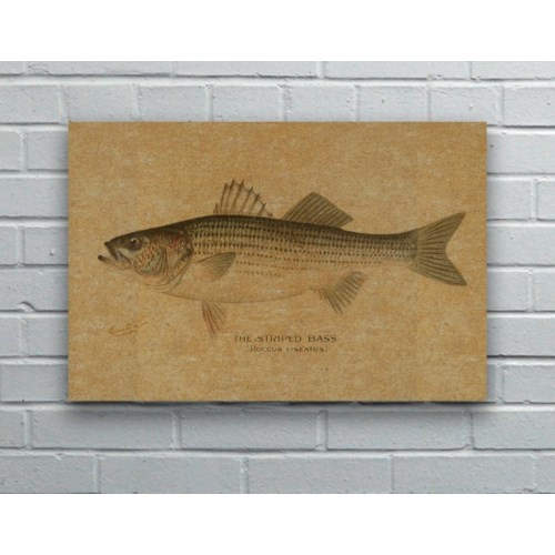 Striped Bass hemp art-Animals and Nature