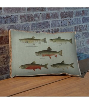 Trout Study pillow-Animals and Nature