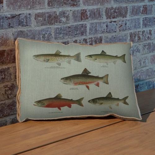 Trout Study pillow