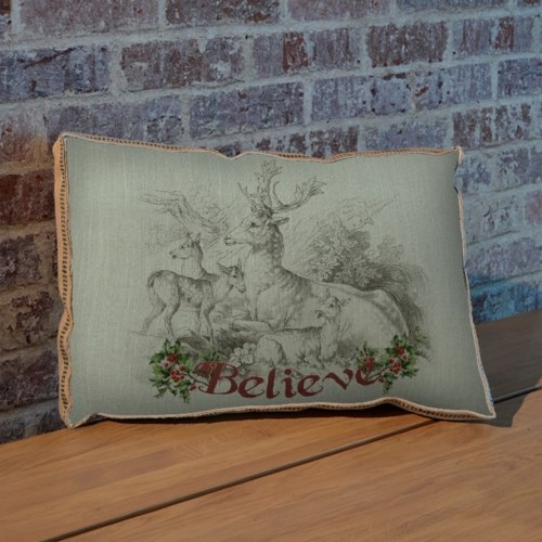 Believe pillow-Inspiration and Holiday