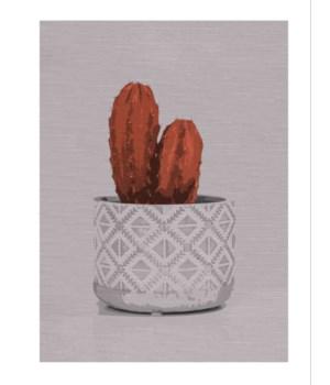 Cactus White -Botanical