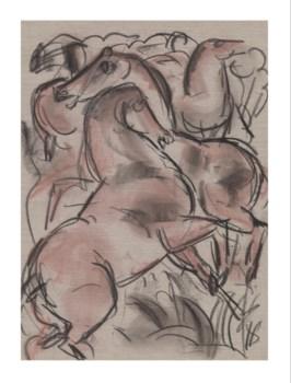 Horse Sketch -Animal