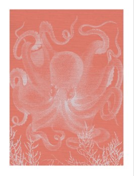 Octopus III Full white with coral background -Coastal