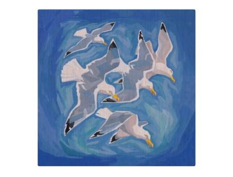 Flock of sea gulls -Animal