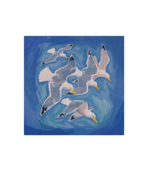 Flock of sea gulls -Animal