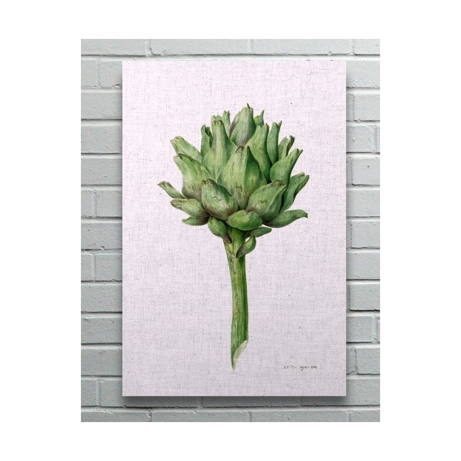 Artichoke-Floral and Botanical