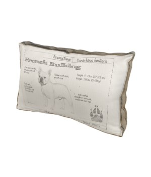 French Bulldog pillow - Animals and Nature