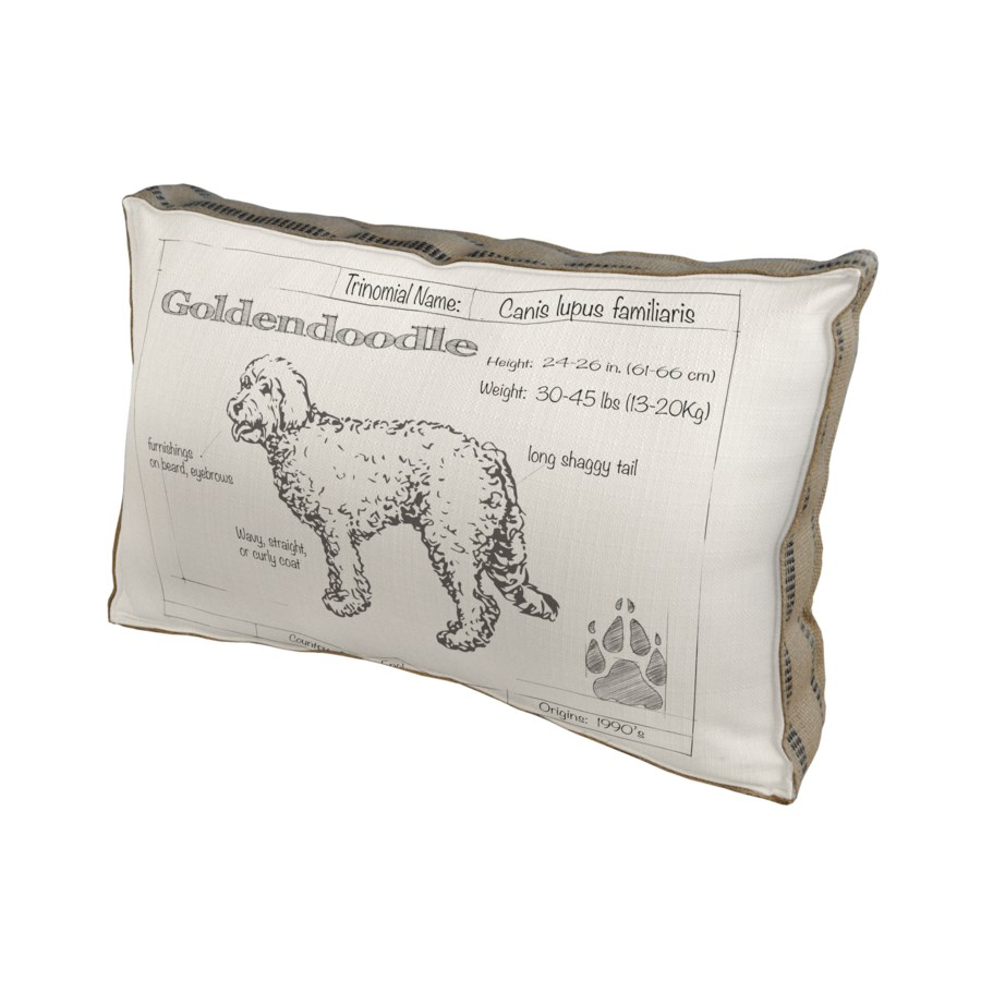 Golden Doodle Dog pillow - Animals and Nature