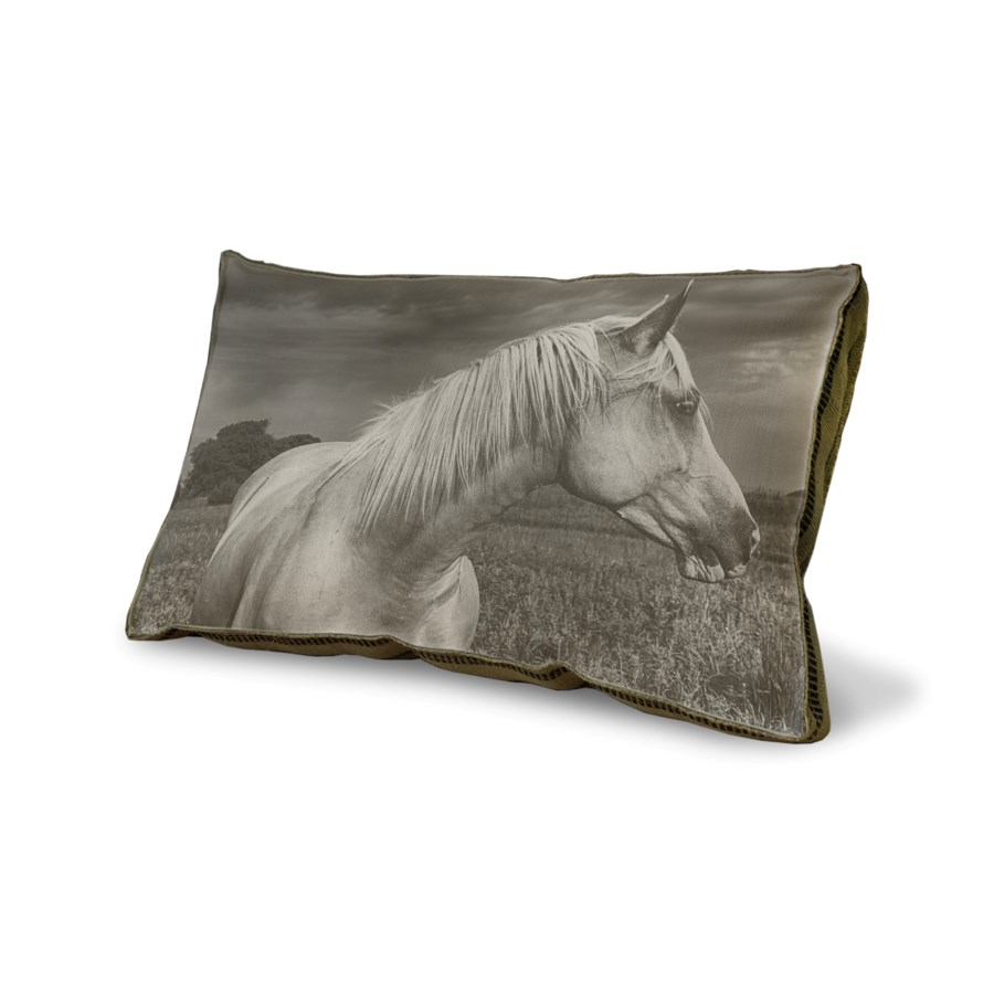 Horse in a Field 01 pillow