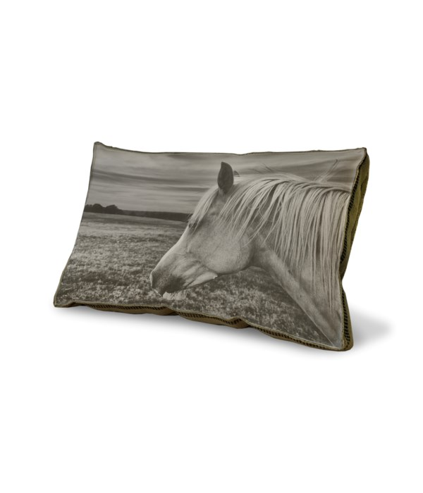 Horse in a Field 02 pillow