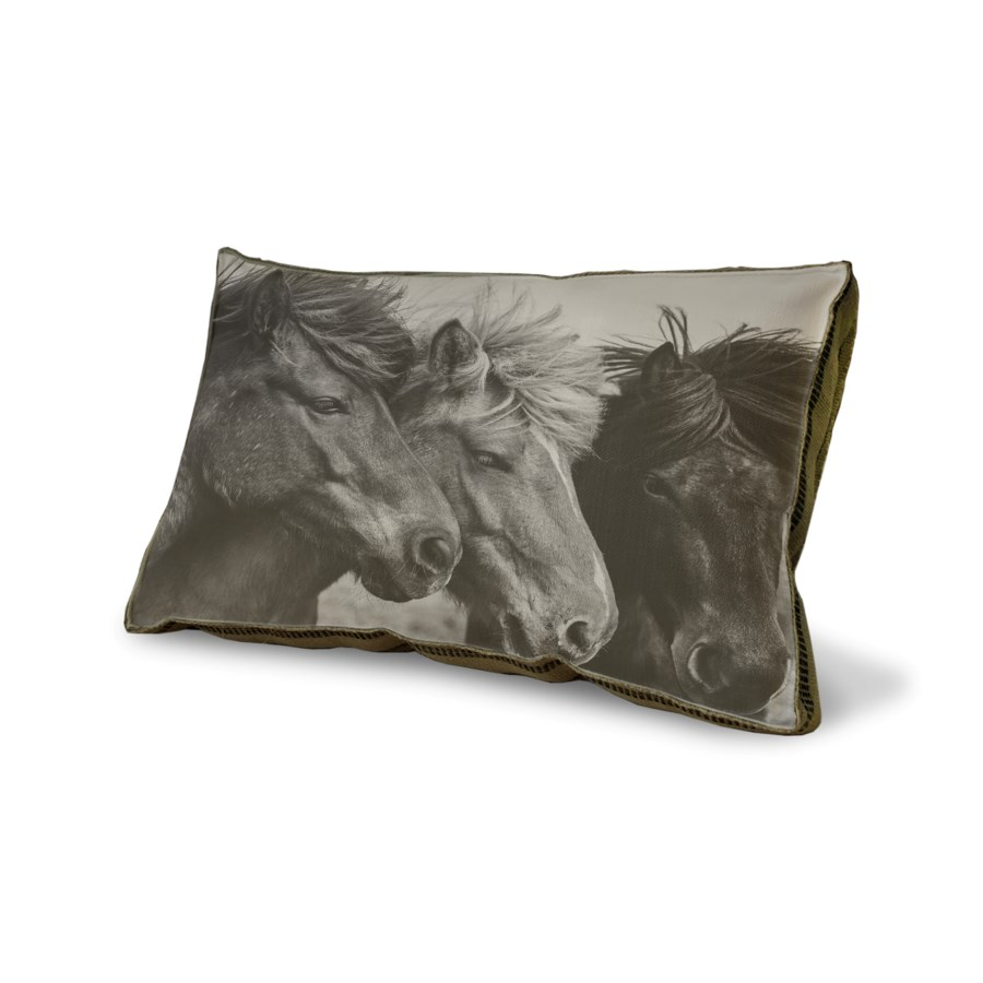 Three Horses pillow