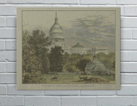 Capitol from the botanical gardens-Architecture