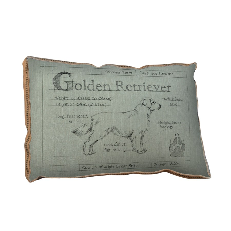 Blueprint Golden Retreiver white pillow-Animals and Nature