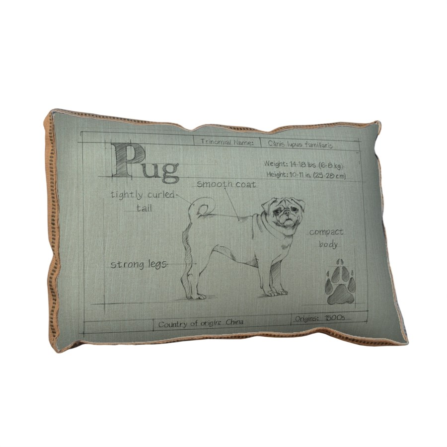 Blueprint Pug white pillow-Animals and Nature