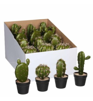 Cactus in pot green 4 assorted pdq - h21xd9cm