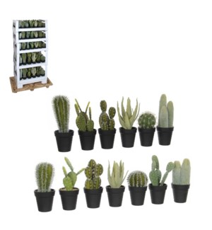 Cactus green 13 assorted pdq 153 pieces - l62xw44xh130cm