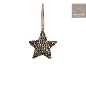 "Icy Star Ornament 0.75x3.75"" Champagne"