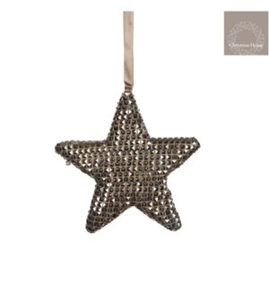 "Icy Star Ornament 1x6.5"" Champagne"