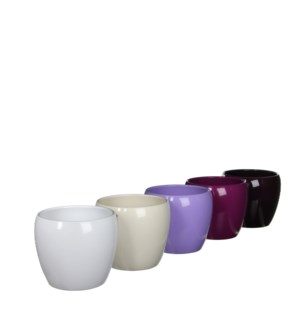 Lidy pot round purple 5 assorted pdq - h12xd14,5cm