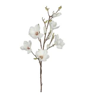 """Magnolia 41.25"""" Cream"""