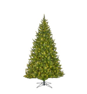 "Glauca xmas tree led green 300L TIPS 689 - 46""x6'"